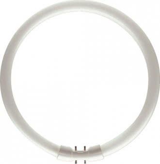 PHIL L-Lampe TL5-C 40W-840